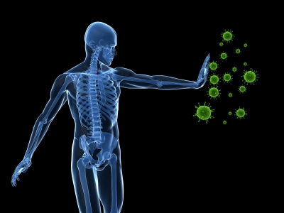 Endosterol Immune System